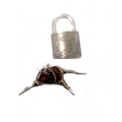 Замки навесные RichDoor 70мм не копируется ключ